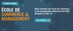 Bachelor Marketing Rennes