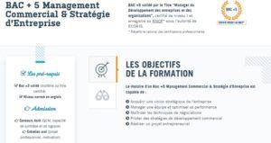 formation Manager du Développement des entreprises
